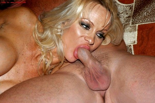 pamala anderson sucking cock